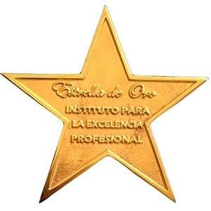 Estrella de oro iMeelZ - iMeelZ recibe la Estrella de Oro otorgada por el Instituto de Excelencia Profesional